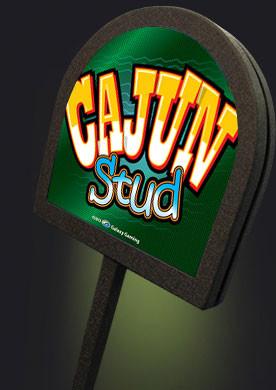Cajun Stud