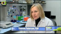 Fox News - Teaching The Immune System To Fight Back Against Cancer