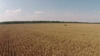 WindStream Technologies Corporate Video